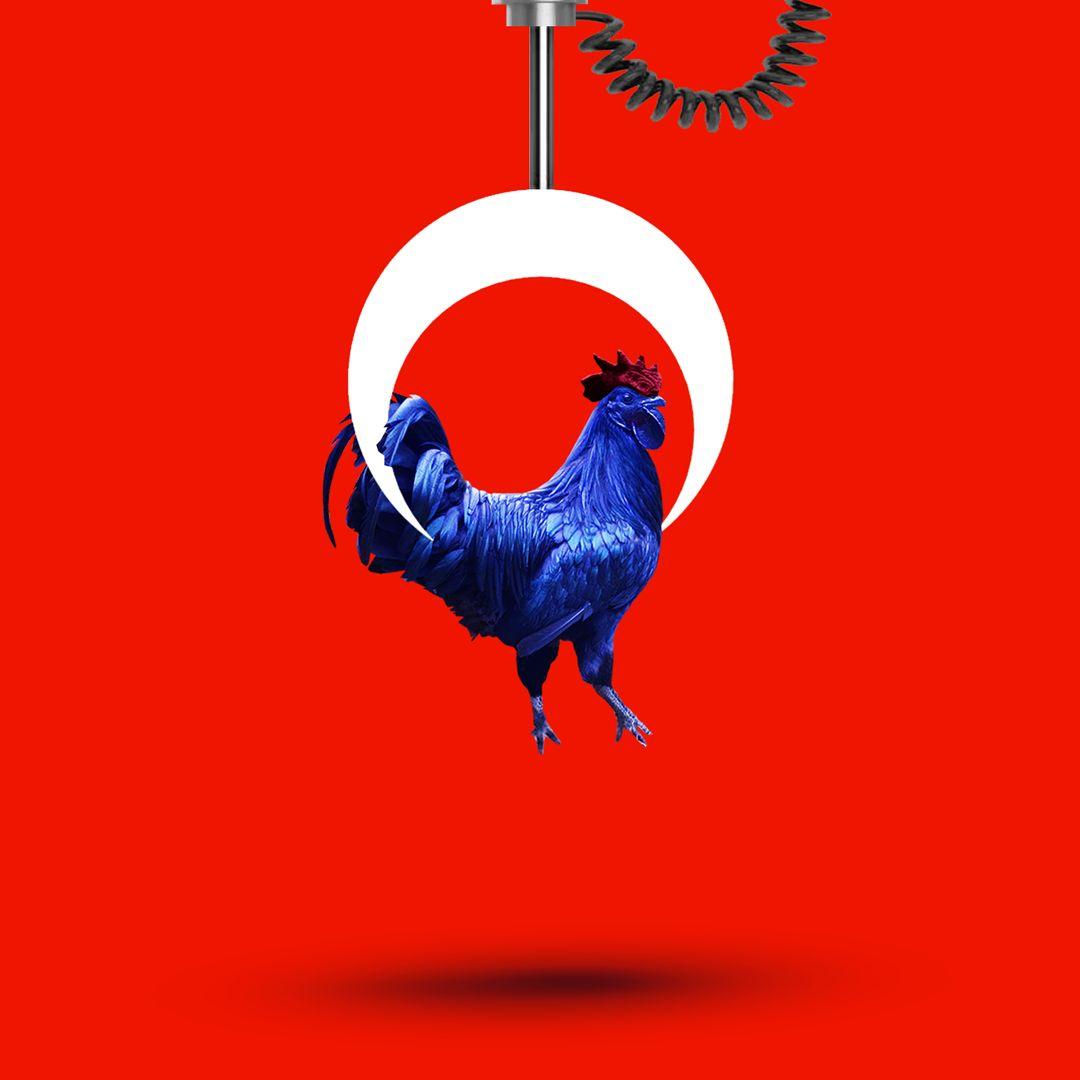 GALLO-FRANCE-TURKEY