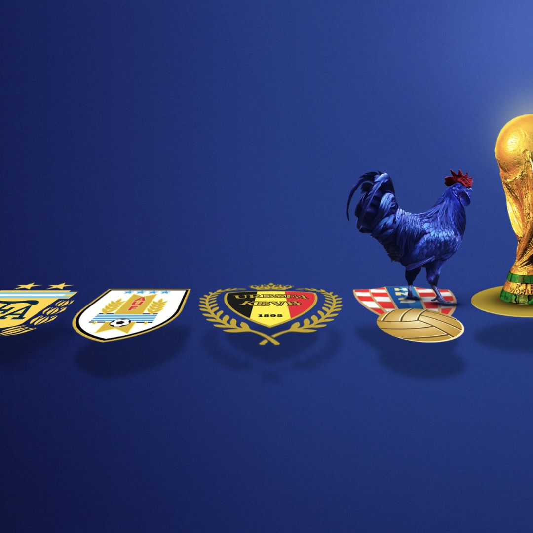 GALLO-FRANCE-WORLDCUP-2
