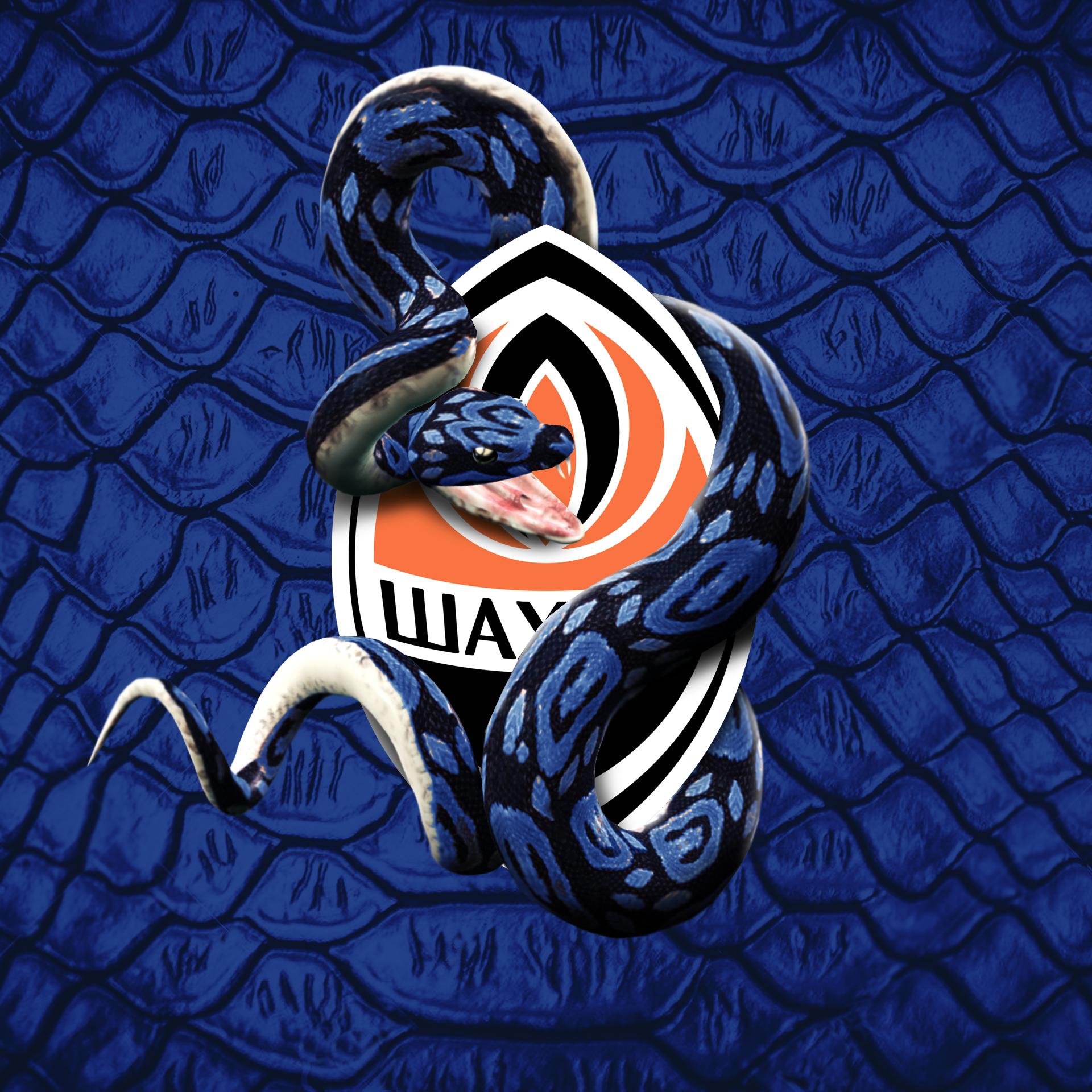 INTER-SHAKTHAR-Serpente